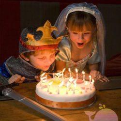 аниматор Средневековые рыцари на день рождения