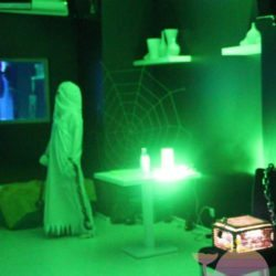 аниматор Дом с привидениями на выпускной