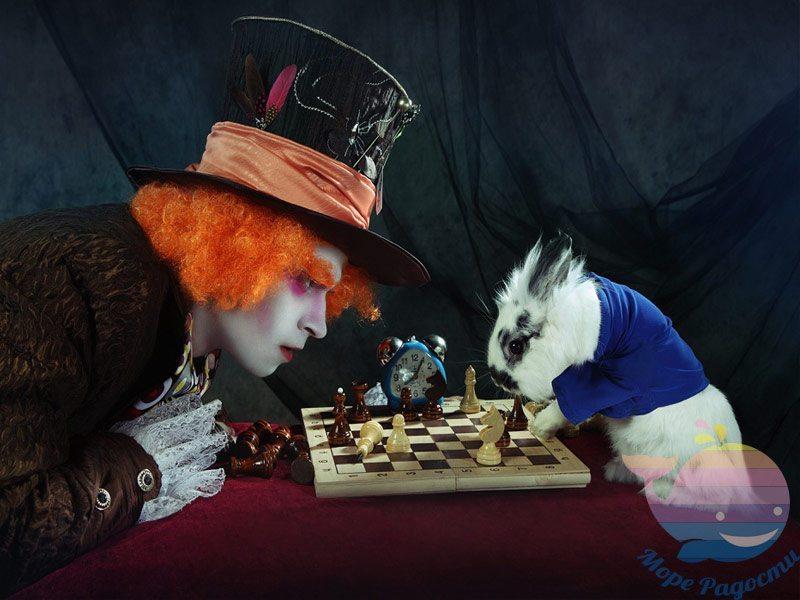 аниматор Алиса и Шляпник в детский сад