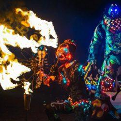 Огненное Шоу на детский праздник