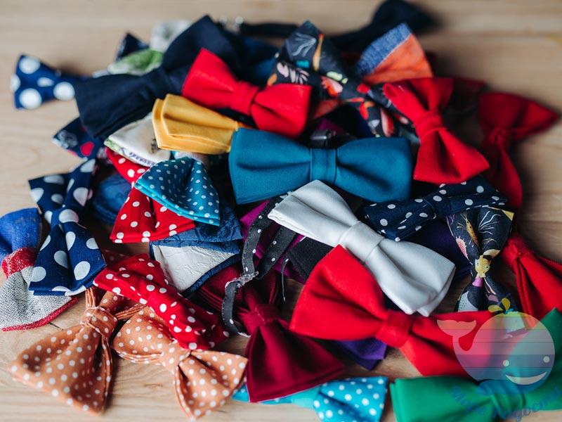 мастер-класс Бабочки-галстуки на юбилей