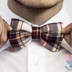 мастер-класс Бабочки-галстуки на день рождения