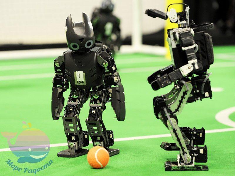 выездной мастер-класс Робототехника
