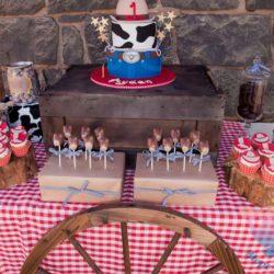 вечеринка Ковбойская вечеринка для детей