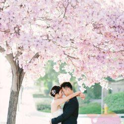 мероприятие в стиле Японская свадьба