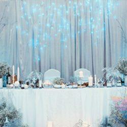 Вечеринка в стиле Зимняя сказка