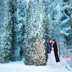 торжество в стиле Зимняя сказка