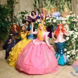 Принцессы Disney